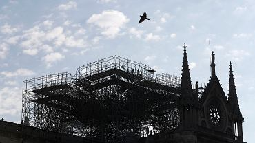 France Notre Dame Frire