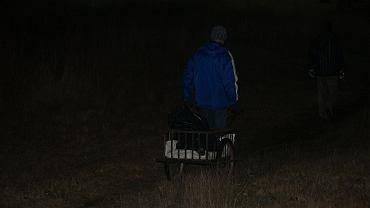Policja szuka sprawcy brutalnego zabicia psa w Wałbrzychu