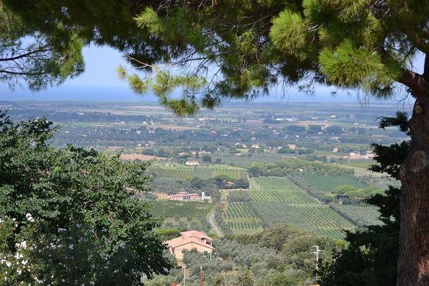 widok z Castagneto Carducci