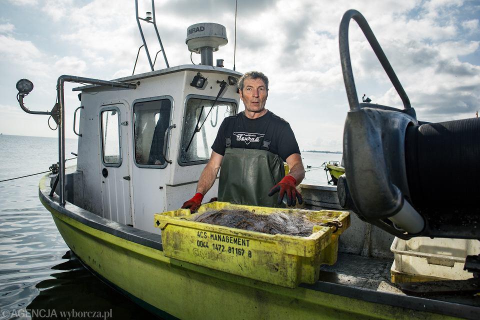 - Zabijanie fok to bezsensowne bestialstwo - mówi Witold Tilsa, rybak z Sopotu. - A zaraz ze Szwecji przypłyną kolejne