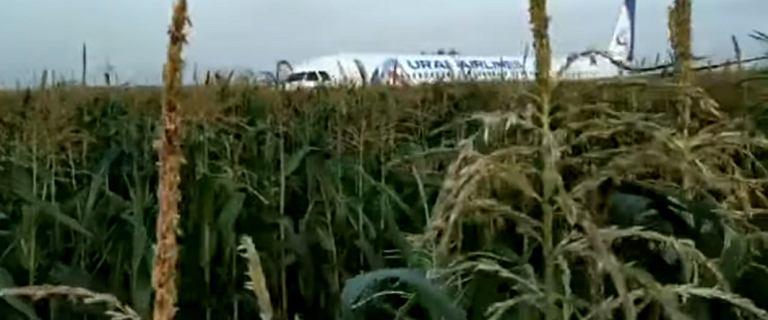 Rosja: awaryjne lądowanie airbusa w szczerym polu. 23 osoby z obrażeniami
