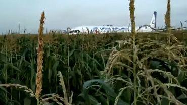 Awaryjne lądowanie Airbusa A321 w Rosji