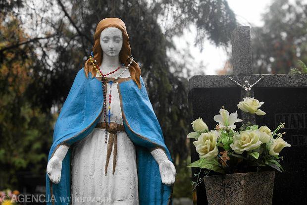 Zdjęcie numer 58 w galerii - Wszystkich Świętych we Wrocławiu. Cmentarze w kwiatach [ZDJĘCIA]