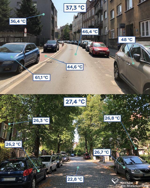 Znalezione obrazy dla zapytania roznica temperatur zielen