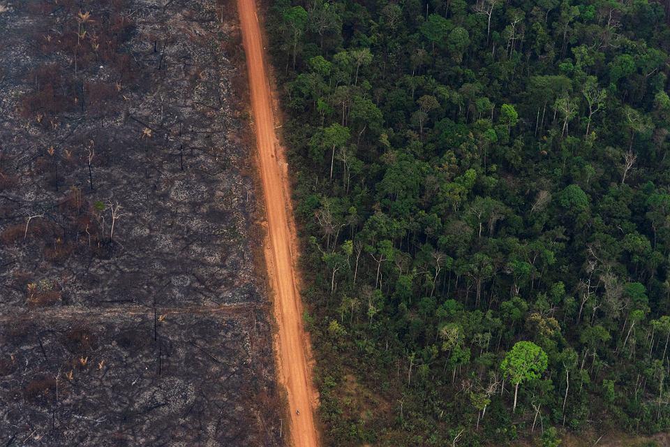Spalony las deszczowy Amazonii. Pożary wzniecili ci , którzy chcą 'zyskać' ziemię pod wypas bydła. Vila Nova Samuel, Brazylia,  27 sierpnia 2019