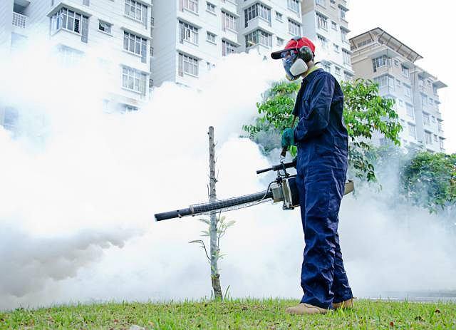 Czasami walka z owadami wymaga użycia specjalnych środków środków chemicznych