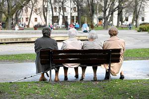 Wystarczy 136 zł, by mieć rolniczą emeryturę? Furtka w programie Mama 4 plus. Wiemy kto zyska