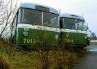 Mija 20 lat od likwidacji trolejbusów. Czy mogą powrócić?