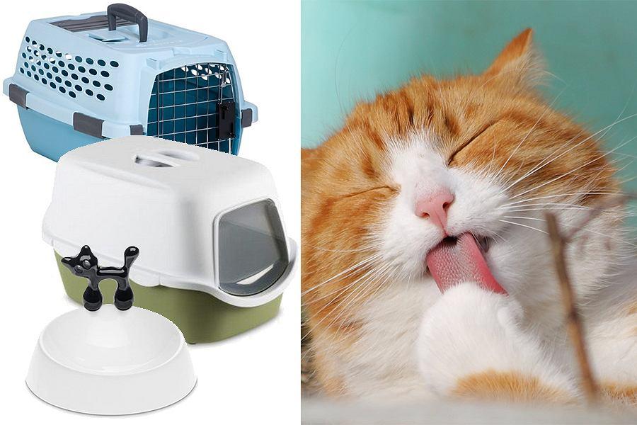 Akcesoria do karmienia i higieniczne dla kota