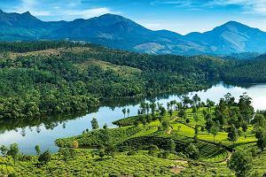 Turystyka śladami przypraw - o Indiach i malowniczych terenach plantacji kardamonu i zielonego pieprzu