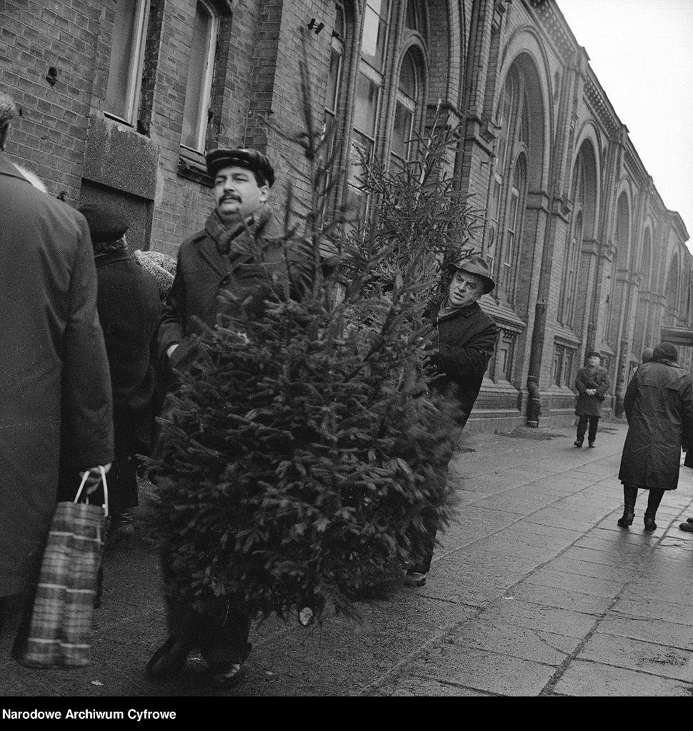 Widoczni mężczyźni niosący choinki. Z lewej budynek Hali Mirowskiej.