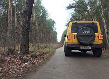 Jeep Wrangler Sahara 2.0 T GME - opinie Moto.pl. Tylko nie nazywaj go SUV-em