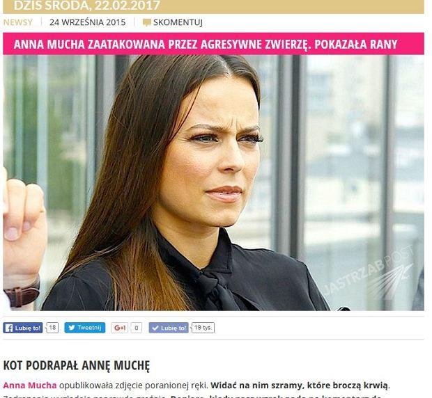 Nagłówek portalu Jastrzabpost.com