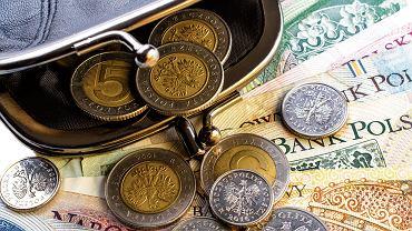 Pieniądze w portfelu.