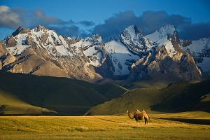Kirgistan: Dwie jurty i wagon - świat bez kobiet