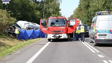 W wypadku na DK12  zginęła jedna osoba, a 16 odniosło obrażenia
