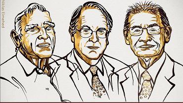 Laureaci Nagrody Nobla z chemii w 2019 roku