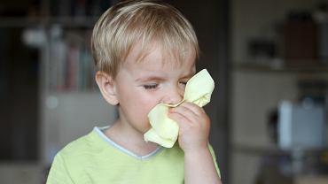 Zapalenie zatok przynosowych to jedna z najczęstszych chorób u dzieci. Na szczęście w większości przypadków organizm w krótkim czasie sam zwalcza infekcję