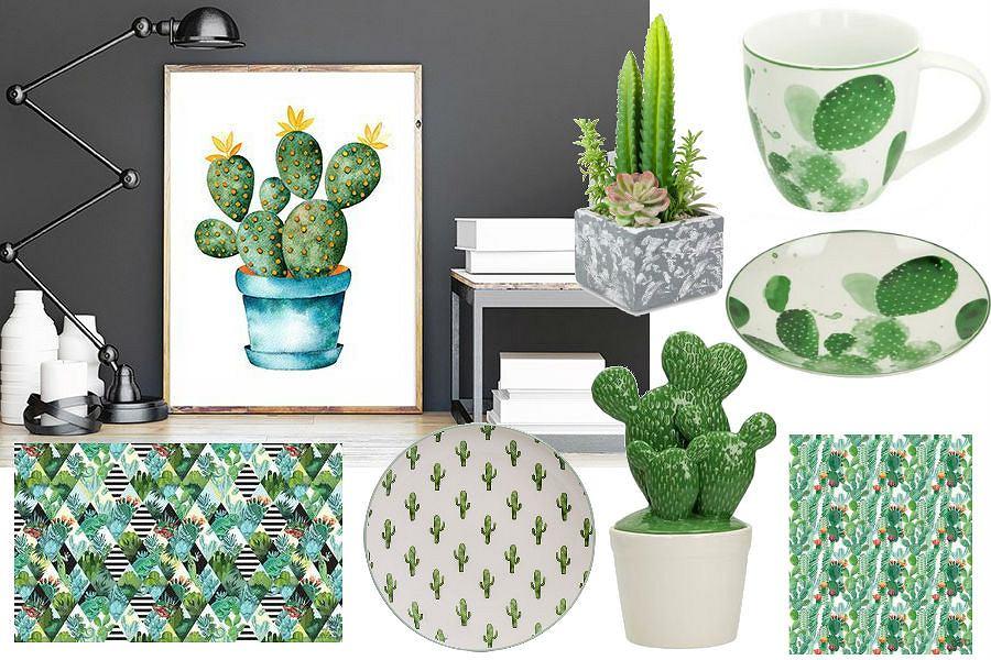 Kaktusy - modny motyw wnętrzarski
