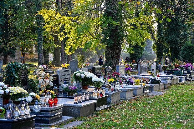 Zdjęcie numer 21 w galerii - 1 listopada w Bielsku-Białej. Kwiaty, wieńce i znicze na grobach [ZDJĘCIA]