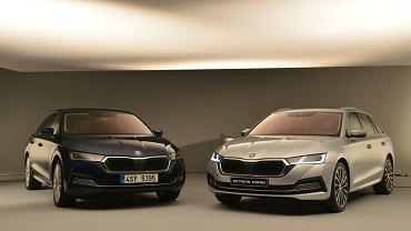 Nowa Skoda Octavia 2020