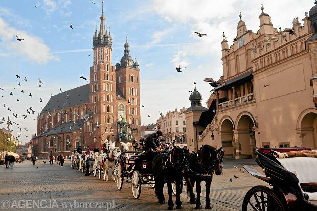Dorożki na rynku głównym Krakowa.