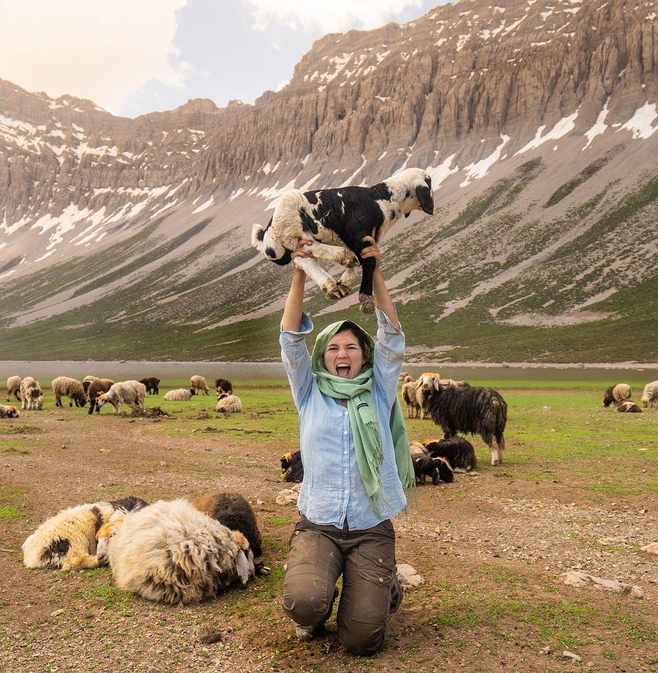 Podczas wypasu owiec z pasterzami w Iranie