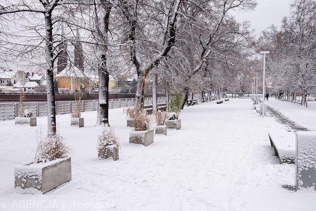 Zdjęcie numer 50 w galerii - Wrocław pod śniegiem. Zobacz zimowe zdjęcia z centrum miasta [FOTO]