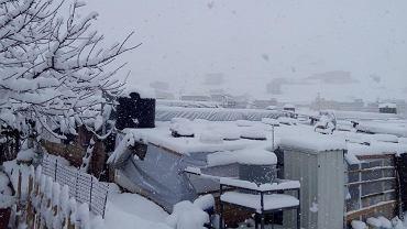 Zasypane śniegiem namioty uchodźców w Libanie