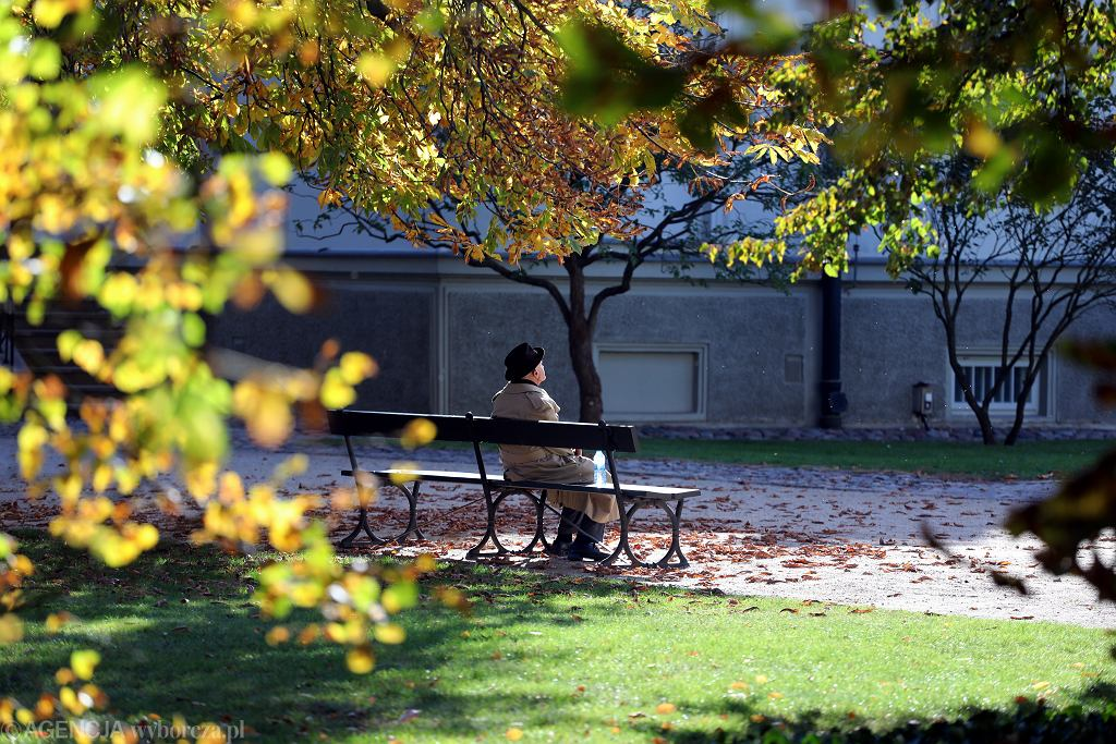 Jesien w Lazienkach