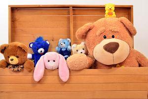 Skrzynia na zabawki - plastikowa, drewniana, z siedziskiem czy na kółkach? Jaką wybrać?