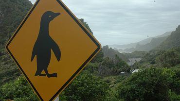 Znak drogowy w Punakaiki na Wyspie Południowej