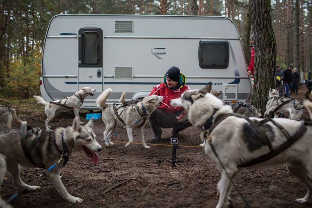 psy na tzw. stake out'cie