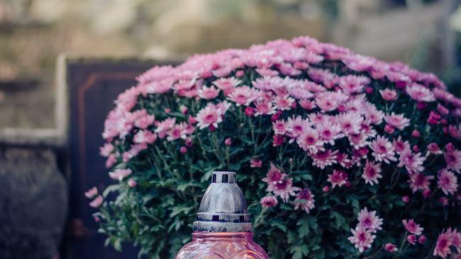 Wszystkich Świętych - aktualne trendy w kwiatach i zniczach