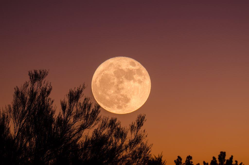 Już wkrótce 'Pełnia Zimnego Księżyca'. Skąd ją oglądać? (zdjęcie ilustracyjne)
