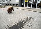 """Maturzyści z IV LO w Sosnowcu: """"Nauczyciele to nasza rodzina, członków rodziny się wspiera"""""""