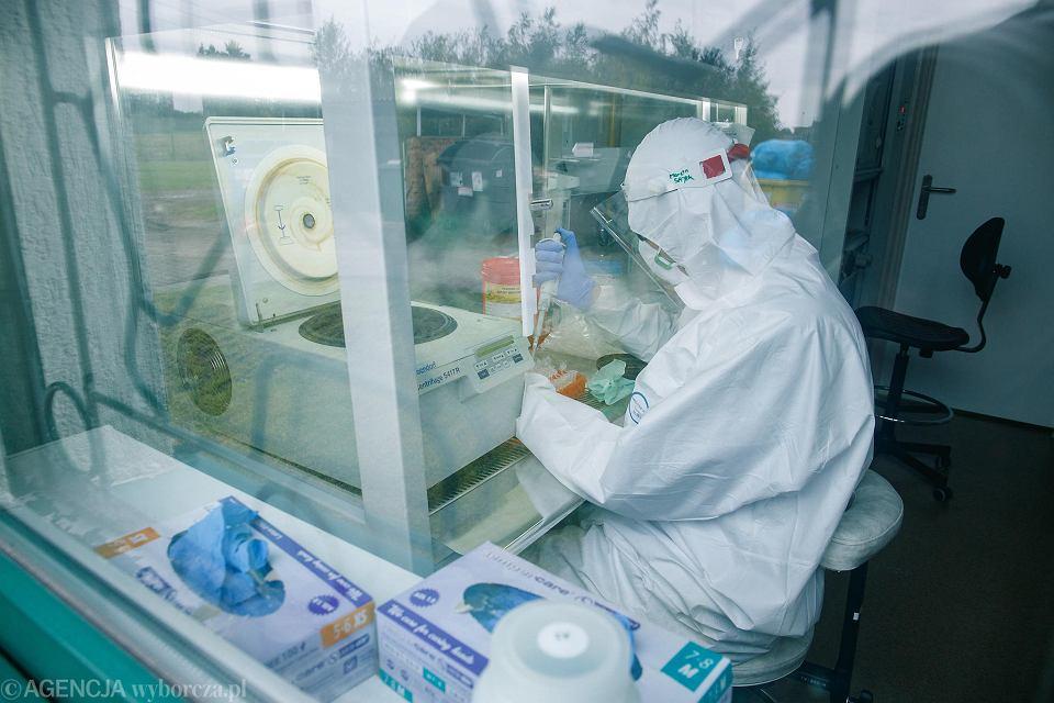 Pandemia koronawirusa. Badania na obecność zakażenia COVID-19 - Laboratorium Diagnostyki, Instytut Genetyki Człowieka PAN, Poznań, 10 października 2021