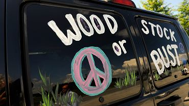 Festiwal Woodstock w 2009 roku może być ostatnim, w tym roku się nie odbędzie