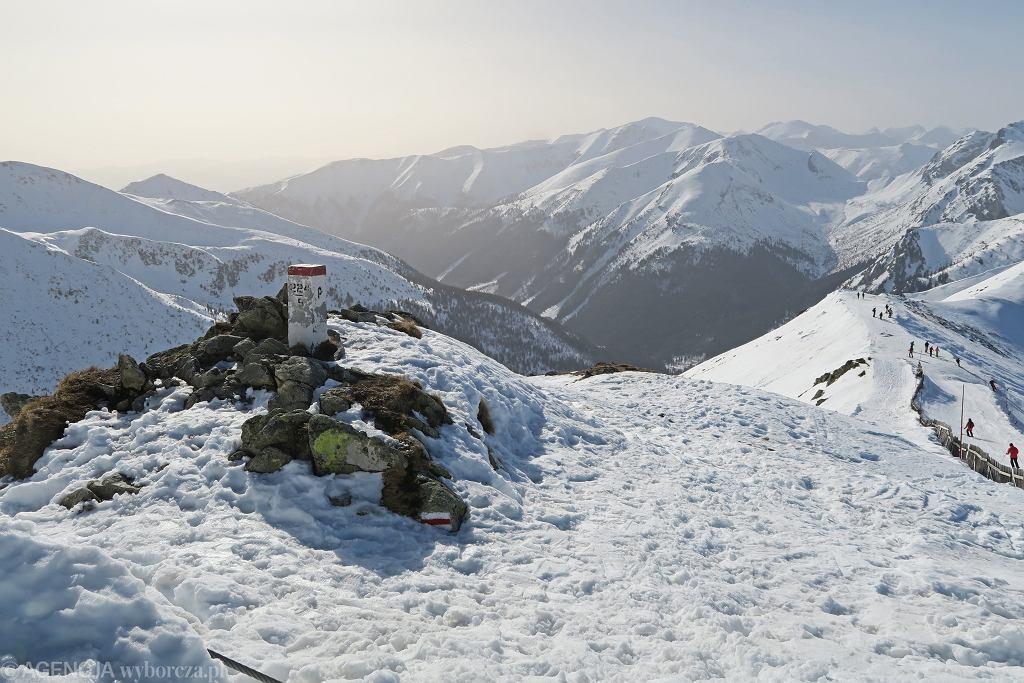 Tatry. Niedźwiedzie i świstaki budzą się z zimowej drzemki. Od 1 marca wędrowanie po zmroku zakazane