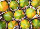 Papaja - jakie ma właściwości, jak ją jeść?