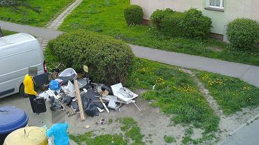 Obraz ze 'śmieciowej' fotopułapki koszalińskiej straży miejskiej