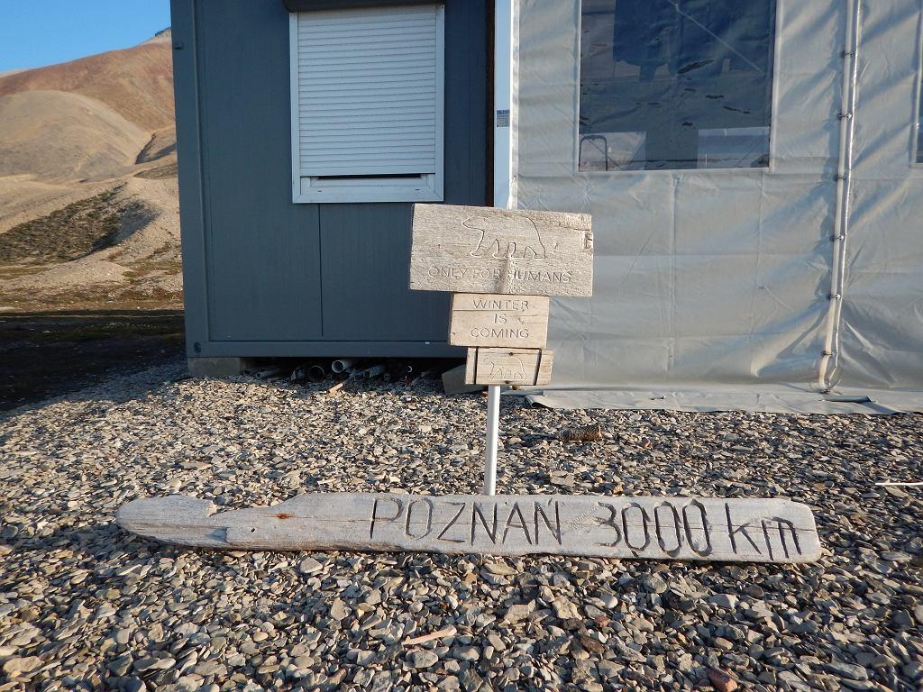 Stacja polarna UAM na Spitsbergenie, Zatoka Petunia (Petuniabukta)