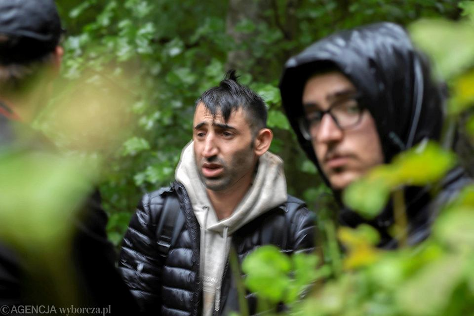 Uchodźcy, których Straż Graniczna wywiozła do Puszczy Białowieskiej, odnalezieni w okolicy Teremisek