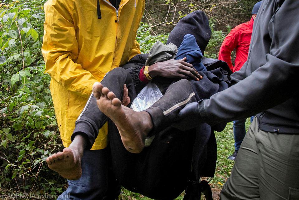 W lesie pod Kuźnicą Grupa wolontariusze odnaleźli 11 wycieńczonych uchodźców ze Sri Lanki, Gwinei, Nigerii, Iraku i Kamerunu.