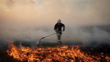 Pożar w Biebrzańskim Parku Narodowym (zdjęcie ilustracyjne)