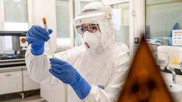 Naukowcy: W 2020 r. pandemia koronawirusa może zabić 0,26 proc. ludzkości