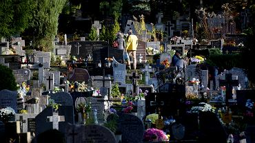 Olsztyn. Na cmentarzu komunalnym doszło do aktu wandalizmu