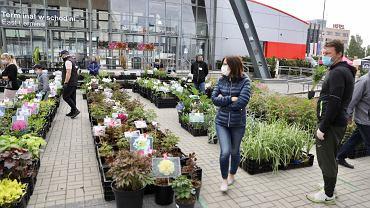 Kielce, maj 2020. Kiermasz Ogród i Ty w Targach Kielce
