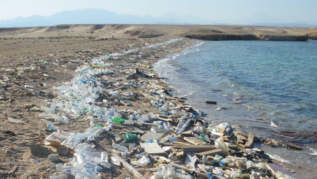 Plaża zaśmiecona plastikiem