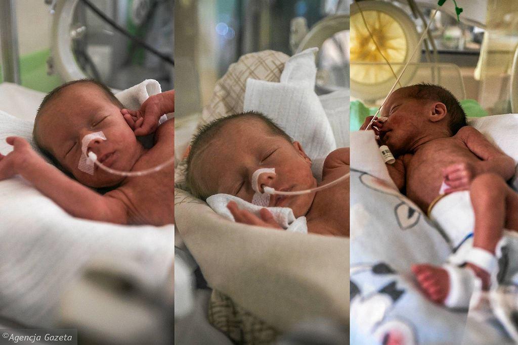 Amelia, Laura i Oliwia - trojaczki identyczne. Taki poród zdarza się raz na 200 milionów